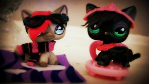 LPS Customs? by BlackKittyShelby