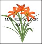STOCK PSD 3D lilly by MaureenOlder