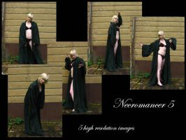 Necromancer 5 stock pack by Mithgariel-stock