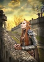 The Elder Scrolls Online cosplay by emilyrosa