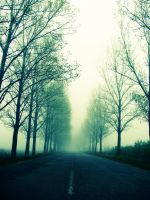 Open Road by dianora