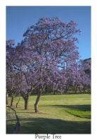 Purple Tree by Thoran