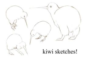 Kiwi Sketches by BrowncoatFiction