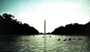 Re:National Mall by ksouth