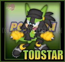 CM_Bday Gift: TodStar the Lucario part 2 by CCgonzo12