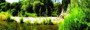 Panoramic View: River by Alana-Lyn