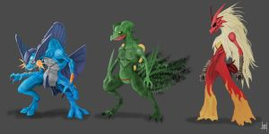 Swampert, Sceptile, Blaziken by xluxifer