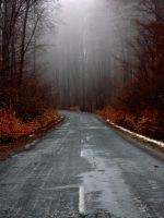 road into the unknown II by torobala