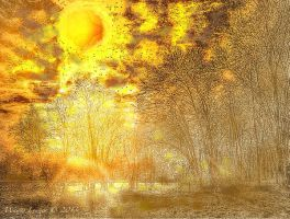 Large Sun over Trees by wdlougee