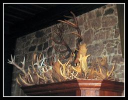 Antler Hoard by Reptile64