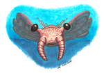 Anomalocaris by SlateGray