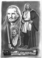 Qui-Gon Jinn Collage by enednoviel