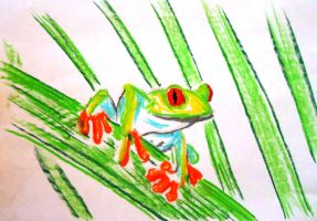 Red-eyed Tree Frog by AlphaPsyka