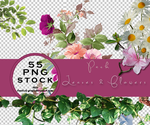 Leaves and flowers PNG stock by dzudi91