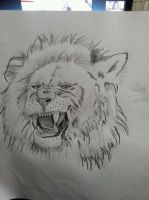 Angry Lion by dailybunny