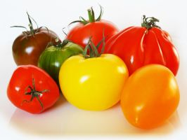 Tomates 1 by eco6org