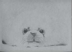 SEAL2 by Lidia6277