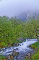 Foggy waterfall. by MarioGuti