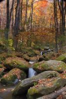 Fall Creek II by sassybikerchic