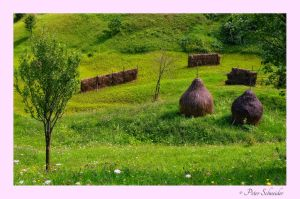 Haystacks 3 by Phototubby