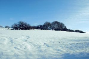 Snowscape Stock 25 by Sed-rah-Stock