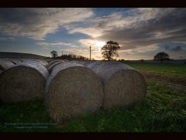 Hay Bales by GMCPhotographics