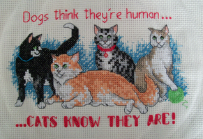 Cats Know cross stitch by lizardlea