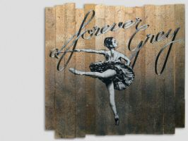theYOUNG | WOODEN GREY BALLET by have-a-nice-grey