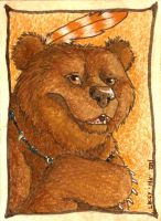 Grizzly Card 2 by TaksArt