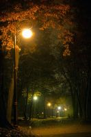 Park Night by cuzco07