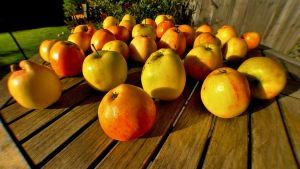 Apple Table by WestLothian