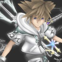Final Form Sora Redraw by Rikulaw