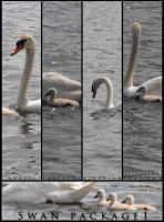 Swan Package 1 by ArrsistableStock