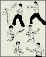 Martial arts  sketches by Amenoosa