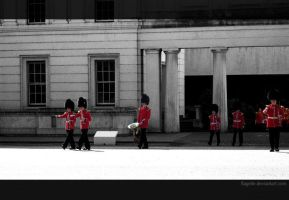 Changing the Guard by Flagelle