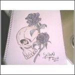 Skull and Roses by UchihaSe7eN