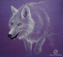 Prowling Wolf by Silartworks
