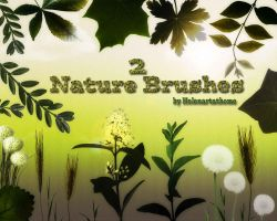 Nature Brushes2 by Helenartathome