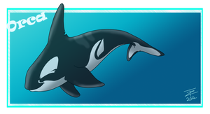 Orca by TwistedZepher