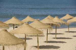 Beach Umbrellas 16578764 by StockProject1