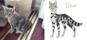 My Cat As A Drawing: Oscar by PainterRaven