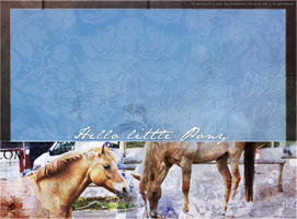 Howrse Layout: Hello little pony by crystalcleargfx