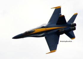 Blue Angels 2 by crownvic4life