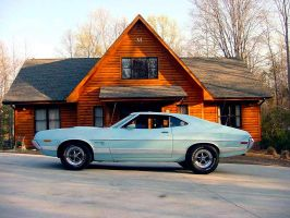 1972 Ford Torino sport by puddlz
