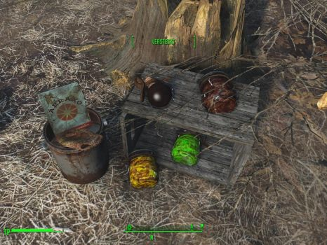 Fallout 4: Little Lunch Pack by WarMocK