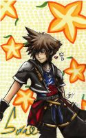 Sora Kingdom Hearts II by soraxriku13