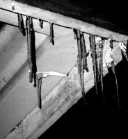 Icicles by seabug