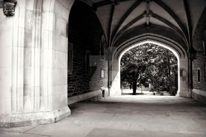 Princeton by BCMPhotography