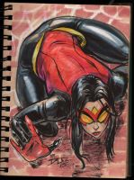 Spider Woman new costume by DJLogan