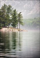 Whispering Pines by Sarah--Lynne
